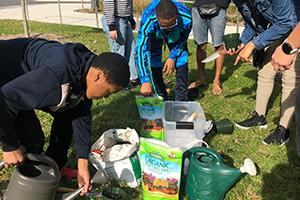 Students planting seeds on campus.