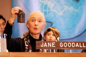 Jane Goodall holding a Cambodian peace bell.