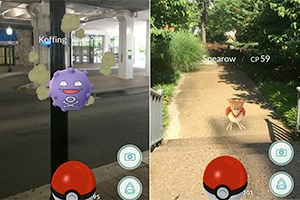 A screen shot of Pokemon Koffing and Spearow