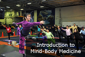 Introduction to Mind-Body Medicine