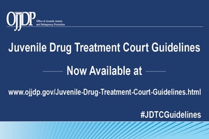 Juvenile Justice Drug Treatment Courts Guidelines Now Available