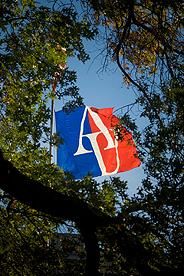 Picture of the AU Flag in in the middle of a tree sporting fall folliage