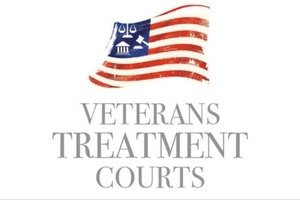 Veterans Treatment Courts 2015 Survey Results