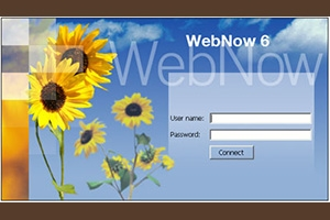 WebNow Login Screen