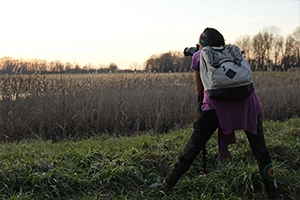 A student stands in a field taking a picture of the setting sun