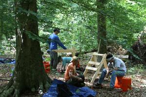 Field school student excavations in the Great Dismal Swamp National Wildlife Refuge.