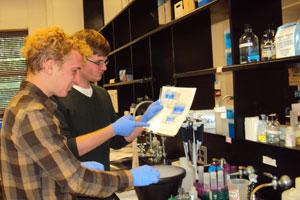 Tim Borbet and Daniel Catt, chemistry research