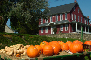 Piles of squash and pumpkins on the back of a tractor with a large red house in the background