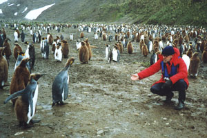 Photo: Jack Child with penguins