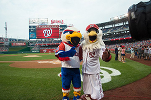 the American University mascot and National mascot on a baseball field