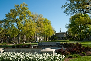 Trees and flowers on the AU quad in spring