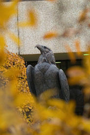 AU Clawed Eagle Statue in the Fall.