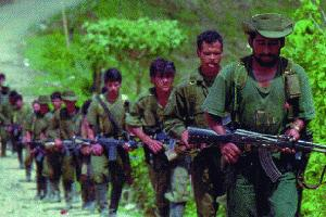 Revolutionary Armed Forces of Colombia (FARC) insurgents.