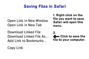 Image of Safari save menu. Text instructions provided below.