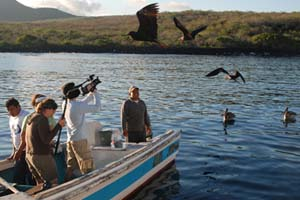 Students photograph birds in the Galapagos as part of the new interdisciplinary course The Practice of Environmentalism: Science, Policy and Communication in the Field