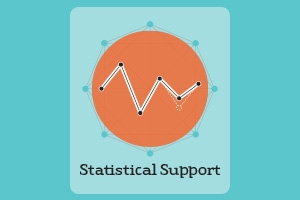 Statistical Support