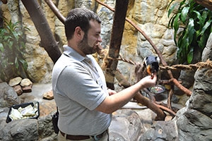 Kenton Kerns, CAS/BA '07, feeding one of his friends at the National Zoo