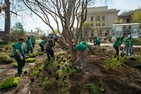 Campus Beautification Day Volunteers