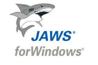 ASAC JAWS Screen Reader