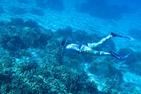 Meaghan Cuddy snorkels with corals in Guam