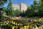 Mass of scouts gathered in the AU amphitheater