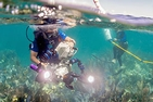Man in diving gear filming underwater with another diver placing buoys.