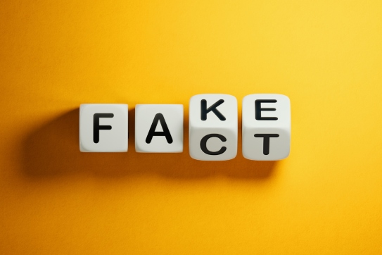 Blocks spelling out 'Fake' or 'Fact'