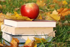 books sitting in leaves