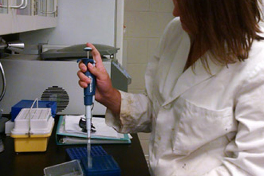 A person in a labcoat pipetting
